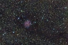 Nebulosa del capullo Foto de archivo libre de regalías