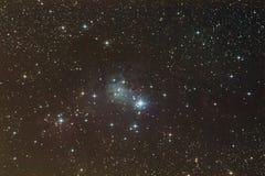 Nebulosa del cono Imagen de archivo libre de regalías