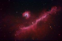Nebulosa del gabbiano Immagine Stock Libera da Diritti
