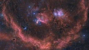 Nebulosa del Orion e zona circostante Fotografia Stock Libera da Diritti