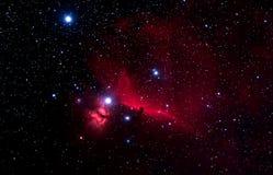 Nebulosa di Horshead Immagini Stock Libere da Diritti