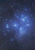 Nebulosa di Pladies Subaru Immagini Stock