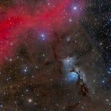 Nebulosa för reflexion M78 i Orion Arkivbilder