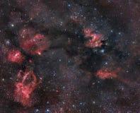 nebulosity созвездия cepheus Стоковые Фотографии RF