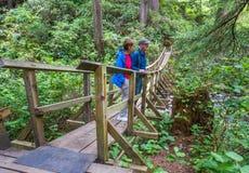 Necarney-Nebenfluss-Hängebrücke Stockbilder