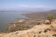 Nechisar park narodowy Obrazy Royalty Free