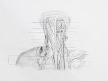Neck back muscles pencil drawing Royalty Free Stock Images