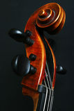Neck of Cello. With strings Stock Image