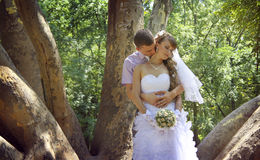 Neck kiss. Young groom kisses his bride`s neck in the park in the shadow of giant platan Royalty Free Stock Photography