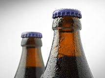 Neck of a trappist beer bottle Royalty Free Stock Images