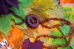 Necklace made of cornelian. Carnelian Necklace on a leaf background Stock Photo
