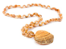 Necklace made of sea shell Royalty Free Stock Images