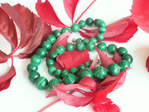 Necklace in malachite. And red leaf royalty free stock images