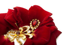 Free Necklace On The Petals Of Red Roses Stock Image - 12138851