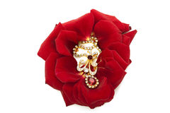 Necklace on the petals of red roses Royalty Free Stock Photo