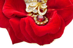 Necklace on the petals of red roses Stock Photos