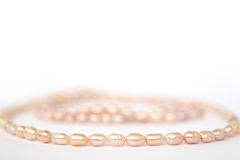 Necklace of pink river pearls. Isolated on white background. Luxury wedding background. Photo of Macro shot of jewelry Royalty Free Stock Photo