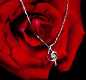 Necklace and rose Stock Photo