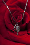 Necklace and rose Royalty Free Stock Photo