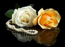 Necklace and roses Stock Image
