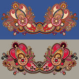 Neckline ornate floral paisley embroidery fashion Royalty Free Stock Photo