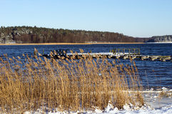 Necko sjö, Polen, Masuria, podlasie Arkivfoton