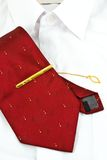 Necktie and white shirt. A necktie pin and white shirt for business man royalty free stock photos