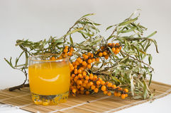Nectar from berries of sea-buckthorn berries. The Image of a glass with juice against sea-buckthorn berries branch Royalty Free Stock Photo