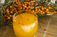 Nectar from berries of sea-buckthorn berries. The Image of a glass with juice against sea-buckthorn berries branch Royalty Free Stock Photos