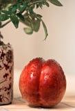 Nectarina con gotas Imagen de archivo libre de regalías