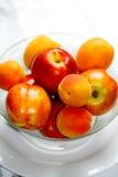 Nectarina e alperces Imagens de Stock Royalty Free