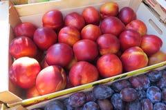 Nectarina frescas no mercado Fotos de Stock Royalty Free