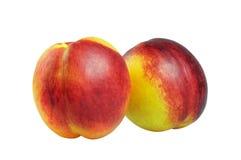 Nectarina madura Imagens de Stock Royalty Free