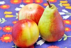 Nectarina, manzana y pera Fotos de archivo libres de regalías