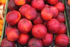 Nectarinas Foto de archivo libre de regalías