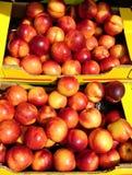 Nectarinas en cajas Fotografía de archivo libre de regalías