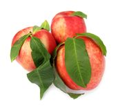 Nectarine. The nectarine is a cultivar group of peach that has a smooth, fuzzless skin. Though fuzzy peaches and nectarines are commercially regarded as Royalty Free Stock Photos