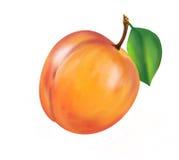 Nectarine Stock Foto's