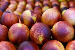 Nectarine royalty-vrije stock fotografie