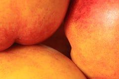 Nectarine royalty-vrije stock foto