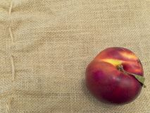 Nectarine Royalty Free Stock Photography