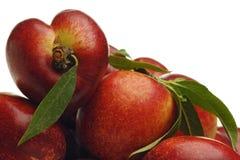 Nectarine Stock Image