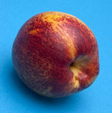 Nectarine on Blue Royalty Free Stock Images