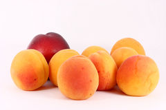 nectarine d'abricots Photos libres de droits