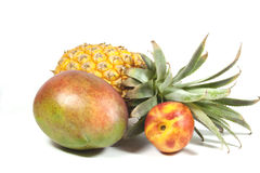 Nectarine d'ananas et mangue tropicale mûre sur le blanc Photos libres de droits