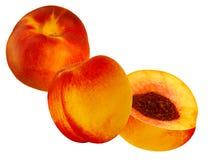 Nectarine de fruit Images libres de droits