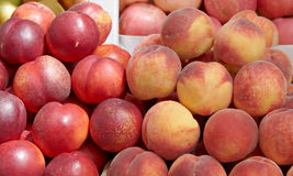 Nectarine en Perzik Royalty-vrije Stock Foto