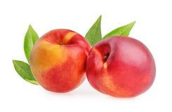 Nectarine fruit isolated Royalty Free Stock Photography