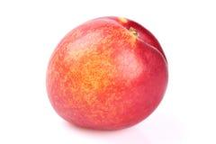 Nectarine fruit Stock Photography
