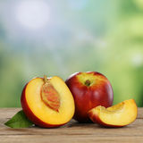 Nectarine fruits in summer with copyspace Stock Images
